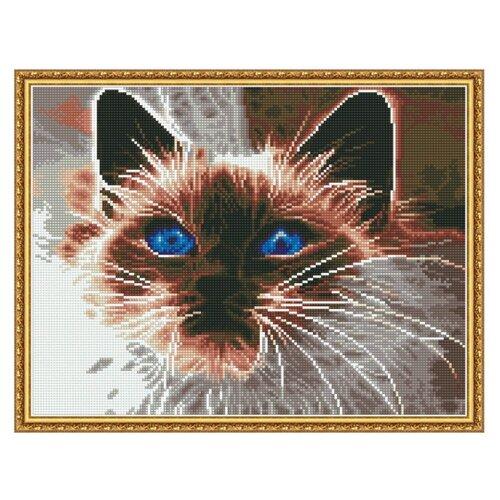 Купить Molly Набор алмазной вышивки Дымчатый кот (KM0122) 50х40 см, Алмазная вышивка