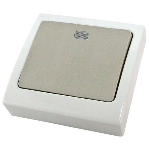 Выключатель 1-полюсный TDM ЕLECTRIC SQ1803-0105,10А, белый/серый автоматический выключатель tdm еlectric пар 1p 4 5 ka 25 а