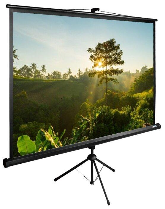 Рулонный матовый белый экран cactus TriExpert CS-PSTE-200х200-BK
