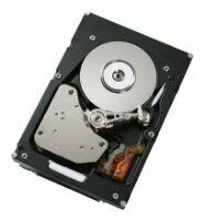 Жесткий диск IBM 49Y1866