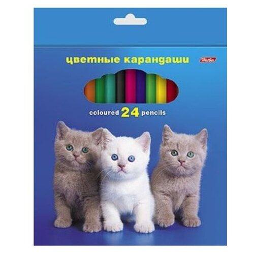 Hatber цветные карандаши Любимцы, 24 цвета (Кс24_22)Цветные карандаши<br>