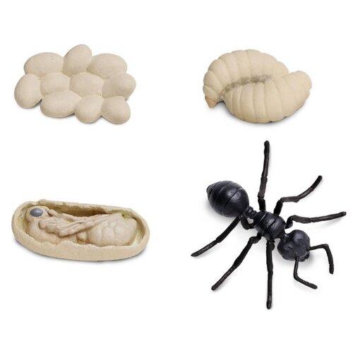 Купить Игровой набор Safari Ltd Жизненный цикл муравья 663916, Игровые наборы и фигурки