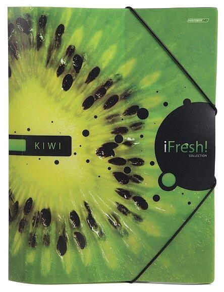 Hatber Папка пластиковая А4 iFRESH-киви с клапанами на резинке