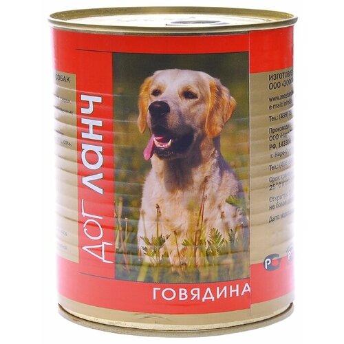 Корм для собак Dog Lunch (0.75 кг) 1 шт. Говядина в желе для собак корм смайли говядина в желе 750g для собак 81069