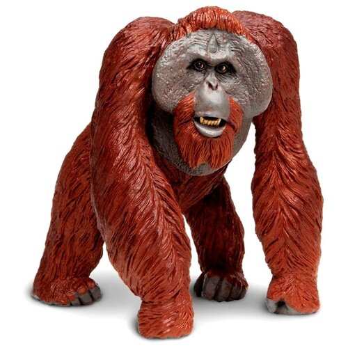 Фото - Фигурка Safari Ltd Калимантанский орангутан 112289 фигурка safari ltd обыкновенный бегемот 270429