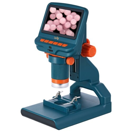 Фото - Микроскоп LEVENHUK LabZZ DM200 LCD синий микроскоп levenhuk rainbow dm700 lcd белый