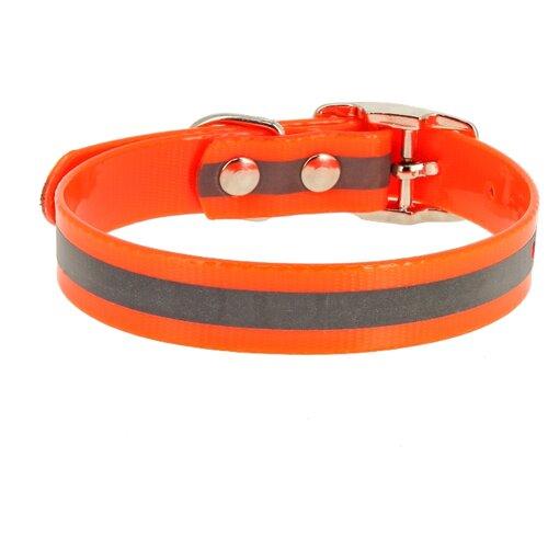 Ошейник КАСКАД Biotan (00212302) 20-24 см оранжевый