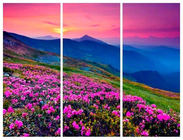 Модульная картина Ekoramka Горы и цветы 90х90 см