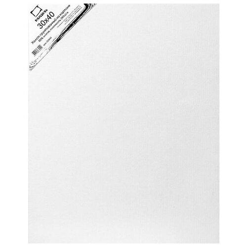 Холст Малевичъ на картоне 30x40 см (223040) printio холст 30x40
