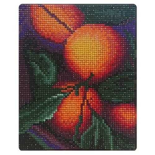 Color Kit Набор алмазной вышивки Апельсиновый аромат (MP004) 17х21 см