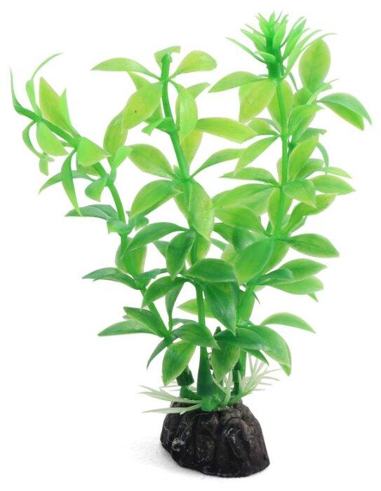 Растение аквариумное Laguna 1047LD, размер 10см.