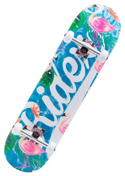 Скейтборд Ridex Oasis 31.6″