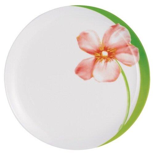 Тарелка обеденная Luminarc Sweet Impression, 25 см