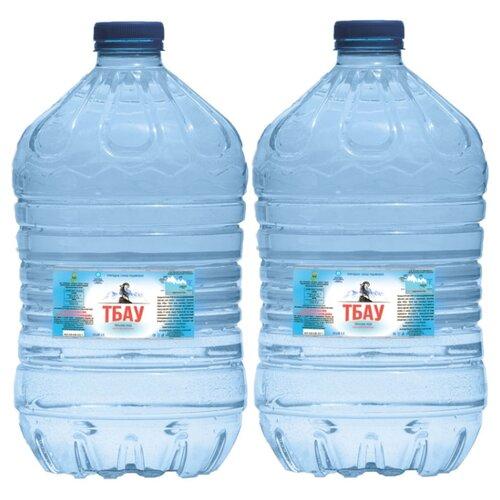 Вода минеральная ТБАУ негазированная, ПЭТ, 2 шт. по 5 л