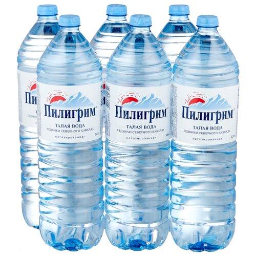 Минеральная питьевая вода Пилигрим негазированная, ПЭТ, 6 шт. по 1.5 л минеральная питьевая столовая вода легенда гор архыз негазированная пэт 1 5 л