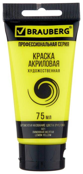 Купить BRAUBERG Краска акриловая художественная Профессиональная серия 75 мл лимонная желтая по низкой цене с доставкой из Яндекс.Маркета (бывший Беру)