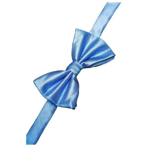 Бабочка Signature 8913 голубой