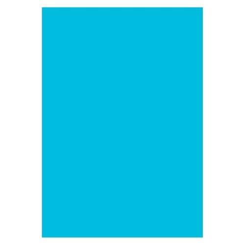 Бумага цветная для офисной техники Удмуртполиграфия А4 80г/кв.м 500 листов Интенсив