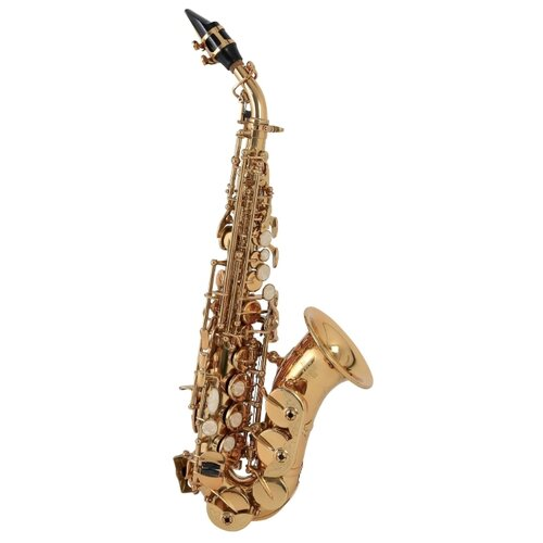 Саксофон сопрано Roy Benson SG-302 золотой Bb