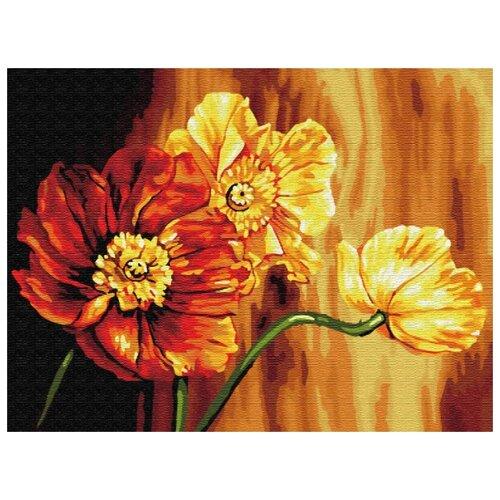 Фото - Картина по номерам Знойные цветы, 30х40 см цветной картина по номерам белый тигр 30х40 см me1072
