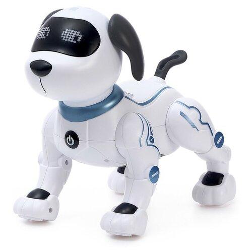 Фото - Робот Zhorya Пультовод Собака ZYA-A2875 белый радиоуправляемый робот zhorya интерактивный белый кот 2059