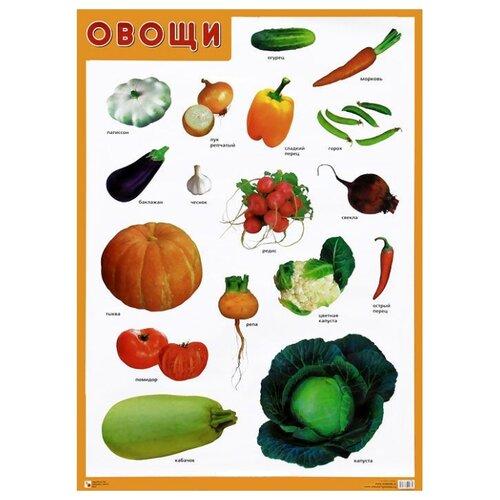 Купить Плакат Мозаика-Синтез Овощи, Обучающие плакаты