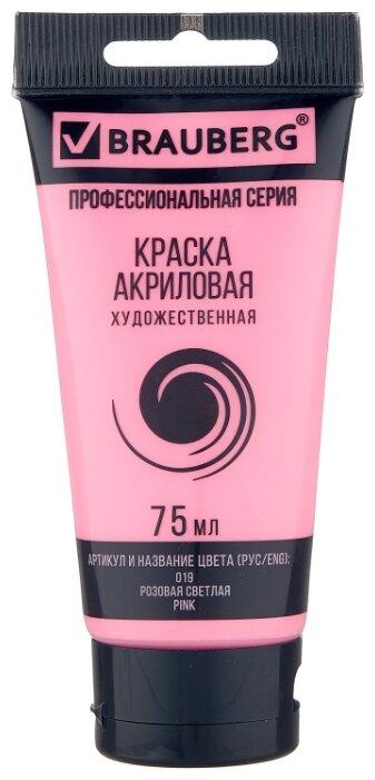 BRAUBERG Краска акриловая художественная Профессиональная серия 75 мл — 245 предложений — купить по выгодной цене на Яндекс.Маркете