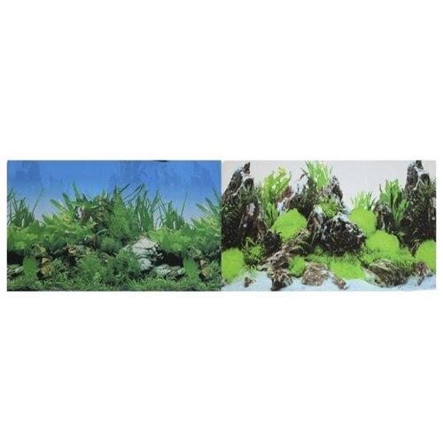 Пленочный фон Prime Растительный/Скалы двухсторонний 30х60 см фон для аквариума hagen двухсторонний растительный растительный 45см цена за 10см