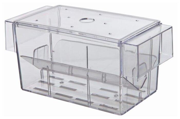 Отсадник для аквариумных рыб TRIXIE 8050, 13х7,5х7,5 см прозрачный
