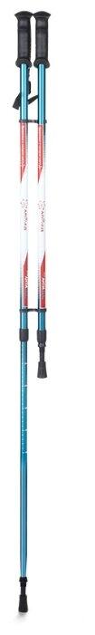 Палки для скандинавской ходьбы 2 шт. Armed STC032