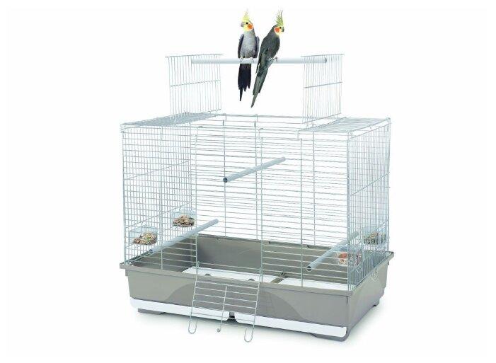 Клетка Imac Wilma 80.5х49х65.5см
