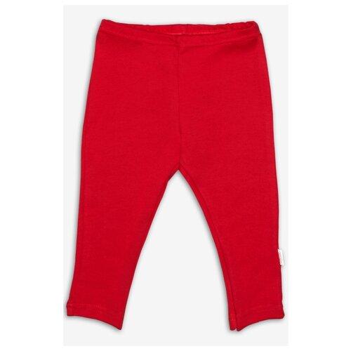 Купить Брюки Веселый Малыш 135/320/зир размер 68, красный, Брюки и шорты