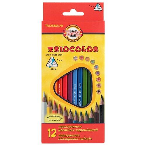 Купить KOH-I-NOOR Карандаши цветные Triocolor, 12 цветов (3132012004KS), Цветные карандаши