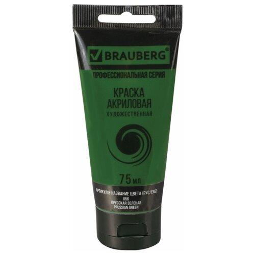 Купить BRAUBERG Краска акриловая художественная Профессиональная серия 75 мл прусская зеленая, Краски