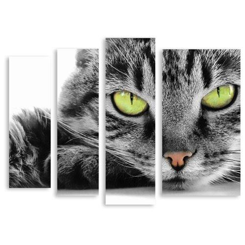 Модульная картина Modulka.ru Модульная картина на холсте Зеленоглазый кот 90x265 см 90х71 см