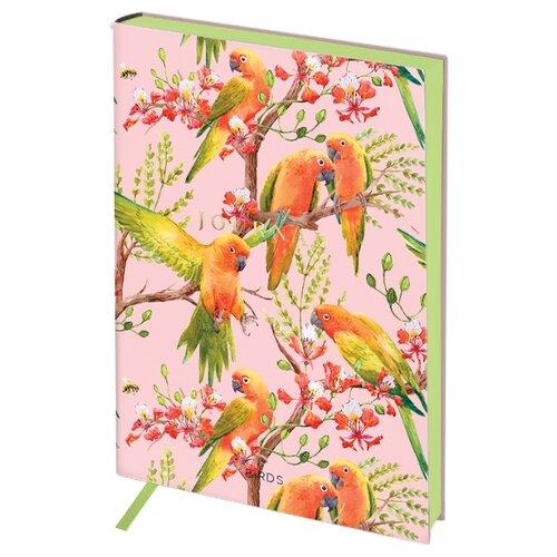 Ежедневник Greenwich Line Vision. Birds недатированный, искусственная кожа, B6, 136 листов, птицы