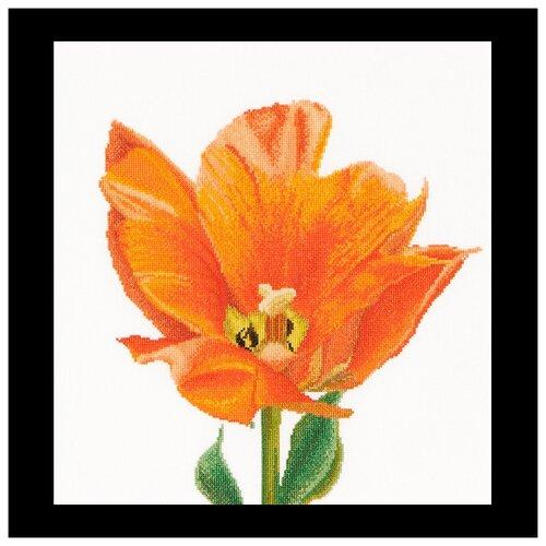 Купить Набор для вышивания Оранжевый тюльпан, канва лён 36 ct 34 х 36 см 523, Thea Gouverneur, Наборы для вышивания