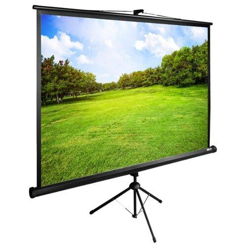 Фото - Экран Cactus 150x200см TriExpert CS-PSTE-200x150-BK 4:3 напольный рулонный черный экран cactus triexpert 180x135cm 4 3 cs pste 180x135 bk