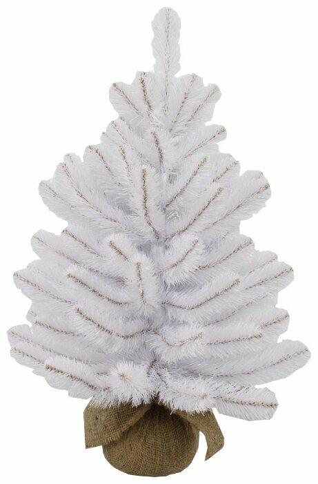 Triumph Tree Ель Атлантическая в мешочке