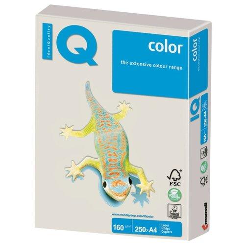 Фото - Бумага IQ Color А4 160 г/м² 250 лист. серый GR21 1 шт. бумага iq color а4 160 г м² 250 лист бледно лиловый la12 1 шт