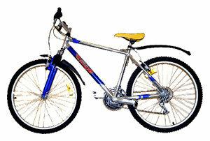 Горный (MTB) велосипед REGGY RG26B3600