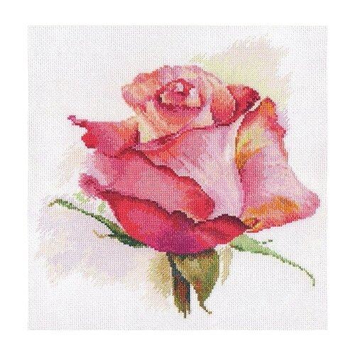 Фото - Алиса Набор для вышивания Дыхание розы. Очарование 24 x 24 см (2-39) алиса набор для вышивания тюльпаны малиновое сияние 22 x 26 см 2 43
