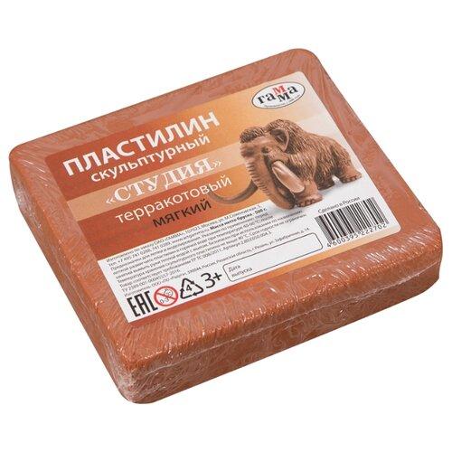 Купить Пластилин ГАММА Студия мягкий терракотовый 500 г (2.80.Е050.004.3), Пластилин и масса для лепки