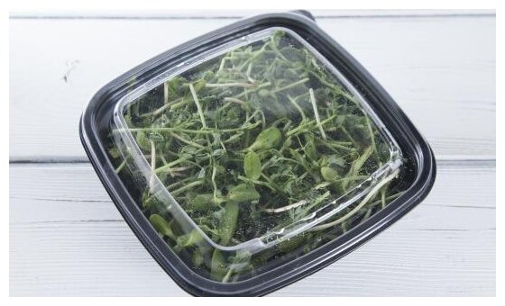 ВкусВилл Салат из свежей микрозелени 4, контейнер пластиковый (Россия)