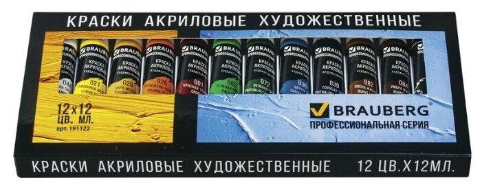 BRAUBERG Краски акриловые Профессиональная серия 12 цветов х 12 мл (191122)