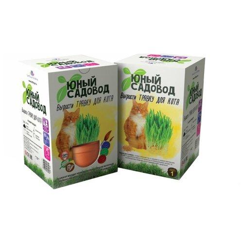 Фото - Набор для выращивания Инновации для детей Юный садовод. Вырасти травку для кота набор для выращивания инновации для детей юный садовод вырасти петунию