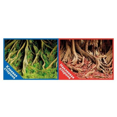 Пленочный фон Prime Корни с мохом/Корни с листьями двухсторонний 50х100 см