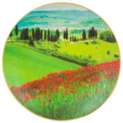 Тарелка декоративная настенная Elan gallery Зеленый луг и маковое поле, 20 см зеленый/красный фигурка декоративная elan gallery лягушонок с планшетом 18 5 х 6 5 х 5 5 см