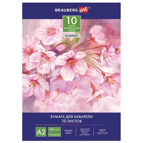 Купить Папка для акварели BRAUBERG 59.4 х 42 см (A2), 200 г/м², 10 л., Альбомы для рисования