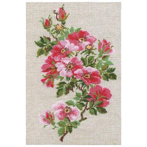 Купить Риолис Набор для вышивания Шиповник 21х 30 см (809), Наборы для вышивания